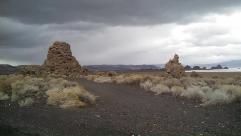 A bleak landscape of low scrub grasses, rock formations, and a dark cloud-covered sky.